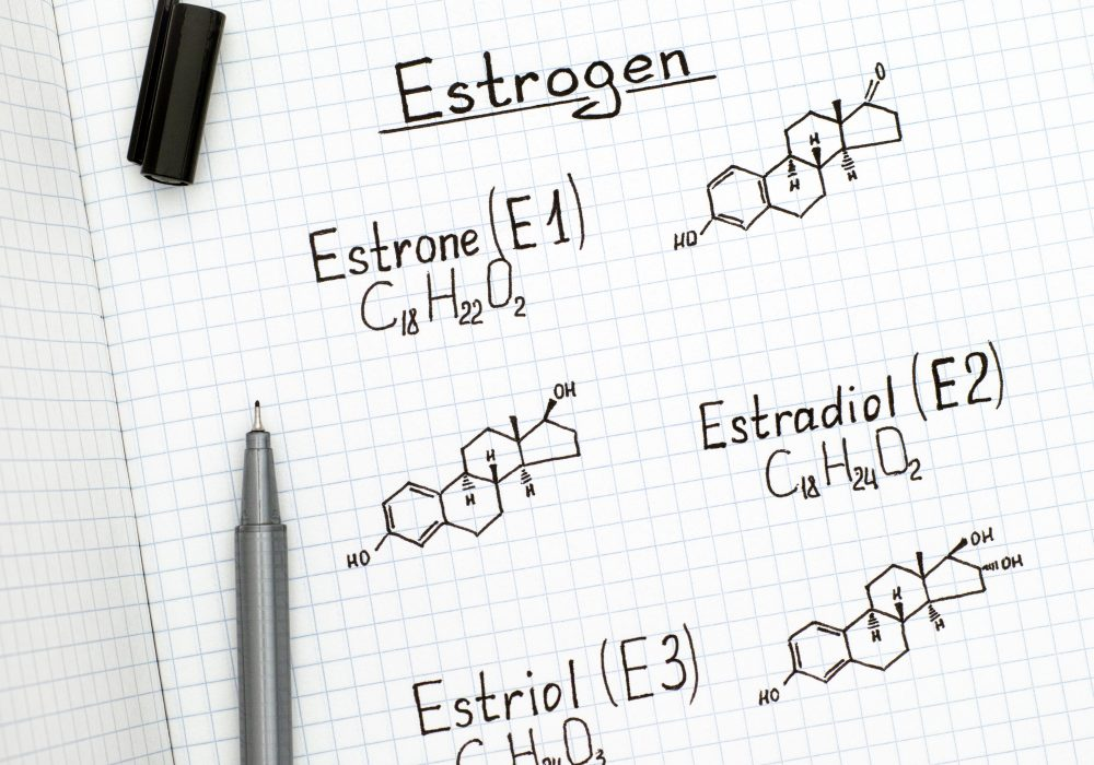What is the Difference Between Biest vs Estradiol?