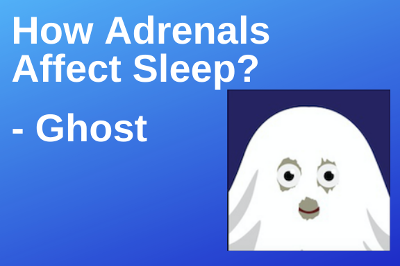 How Do Adrenals Affect Sleep? Ghost | PYHP 069